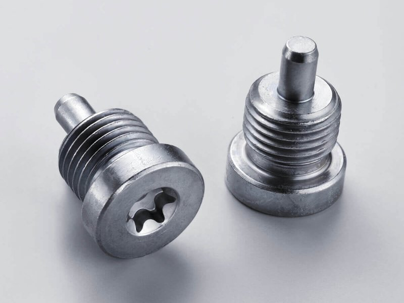 BSH screw plug – reliable sealing